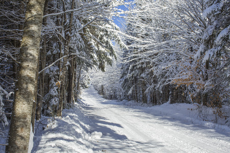 Breathtaking winter country road