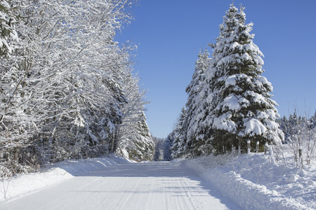 Beautiful winter country road
