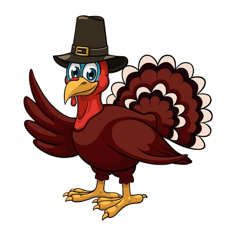 thanksgiving turkey: A cartoon thanksgiving turkey in a pilgrim hat on white background