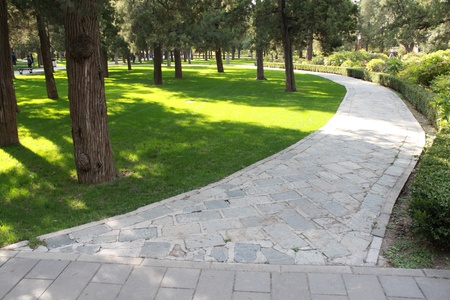 Stone pathway in park