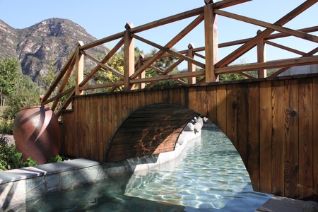 Wooden bridge on the pond