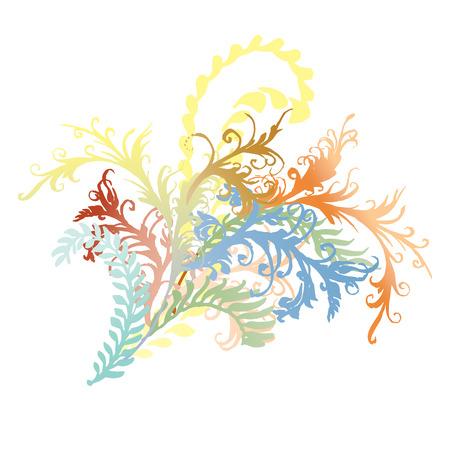 flower vines: Ornate curly flower vines and leaves illustration. Colorful flourishes, hand-drawn curly floral burst. Illustration