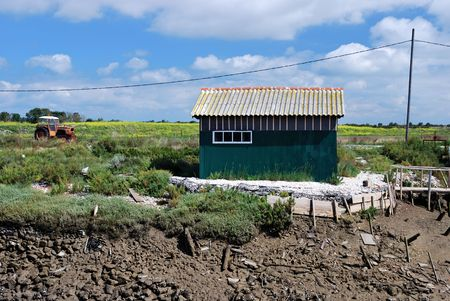 broken hill: Green Oyster fishing house and a tractor near coastlines in Oleron. (France) Stock Photo
