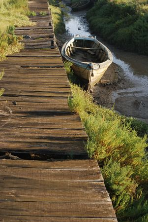punting: Pontoon and Small boat aground in the green land.