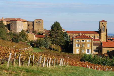 Vinyard around a medieval golden village called Theiz� (Beaujolais / France) Stock Photo - 2139397