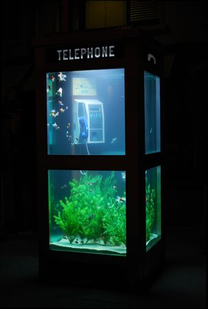 Aquarium with living fishes in a french telephone booth. Stock Photo