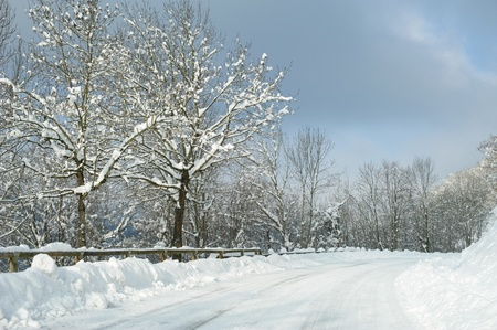 freshly fallen snow: Freshly fallen snow on road