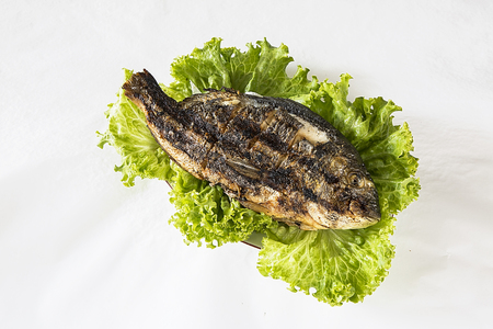 Grilled fresh Sparus aurata with green salad on white background