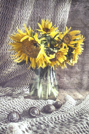 Art Still life of beautiful sunflowers in a vase Stock fotó