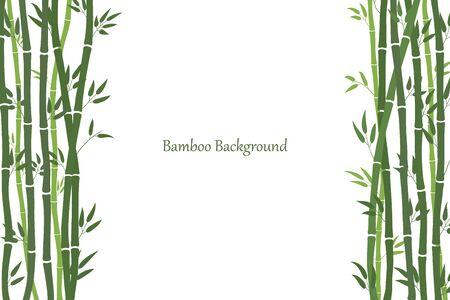 Cornice decorativa con steli di bambù. Stile minimalista. Steli verdi e foglie di bambù. Sfondo bianco con un posto per un'iscrizione. Vettore Vettoriali