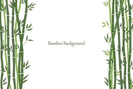 Decorative frame with bamboo stalks. Minimalistic style. Green stems and bamboo leaves. White background with a place for an inscription. Vector Vektoros illusztráció