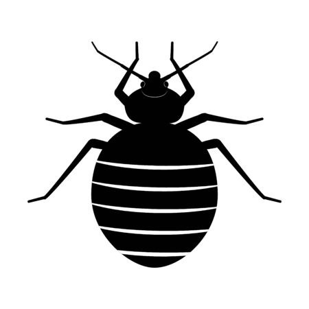 Bed bug. Black silhouette of an insect on a white background. Bedbug vector illustration. A symbol of the danger of a bug bite. Vector Illustration