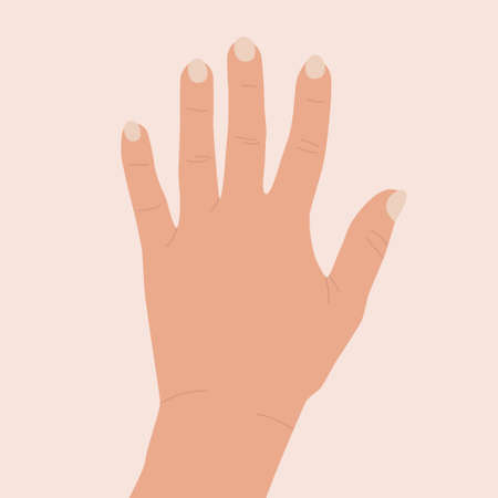 Hand raised up. Female hand with open palm. Concept of positive greeting, meeting, volunteering, voting, non verbal communication. Vector flat illustration of an isolated arm. Number five