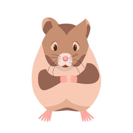 Cute funny hamster. Domestic pet guinea pig. Rodent cartoon character. Vector illustration isolated on white background. Small animal hamster. Clipart. Vecteurs