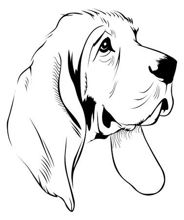 agression: visage de chien