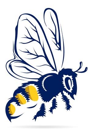 honey bee: honey bee