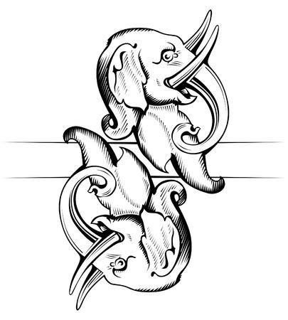 elephant face  Vector