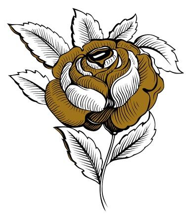 rose flower Stock Vector - 9462875