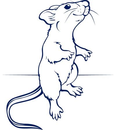 cartoon rat or mouse  Illustration
