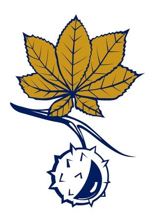buckeye seed: chestnut leaves with nut Illustration