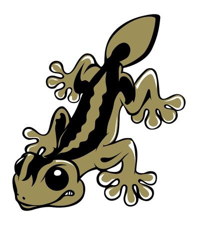 vicious lizard salamander Vector