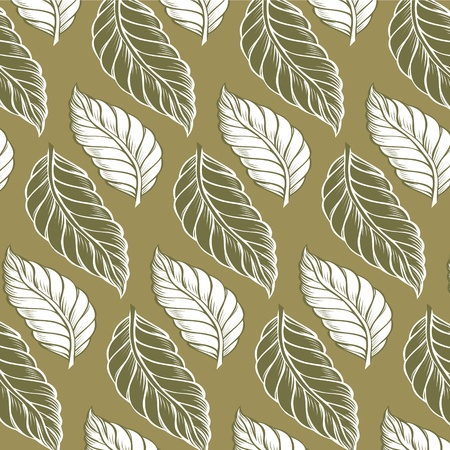 cacao leaves background pattern in green colors Vector