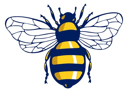 insect bee Stock Vector - 11308536