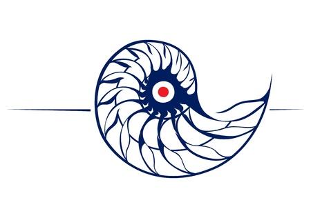mollusk: spiral helix  Illustration