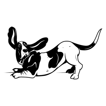 basset: Cartoon Basset Hound. Vector illustration. EPS 10 Illustration