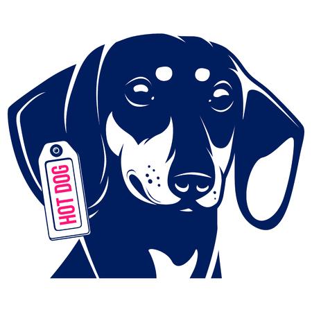 犬ダックスフンド ホットドッグ。ベクトル図  イラスト・ベクター素材