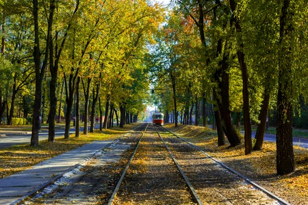 Tram and tram rails in colorful forest. Kiev, Ukraine