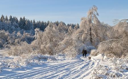 Christmas walkr photo