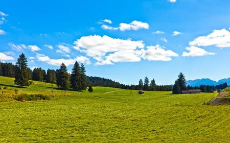 Summer Landscape with Farm photo
