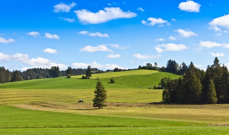 Summer Landscape with Farm photo