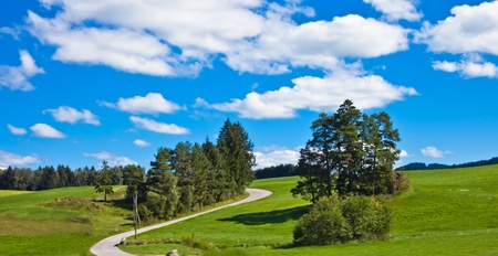 landscape of meadows,  the road to the farm photo