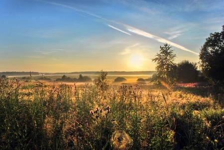 Beautiful morning landscape Stock Photo - 13814552