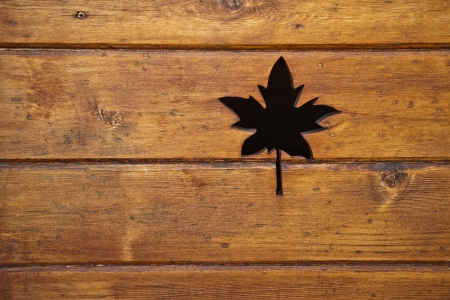 texture of the board with carved maple leaf photo