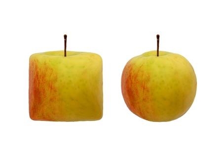 square apple and round apple Stock Photo - 16927540