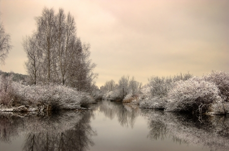 lake and trees in winter