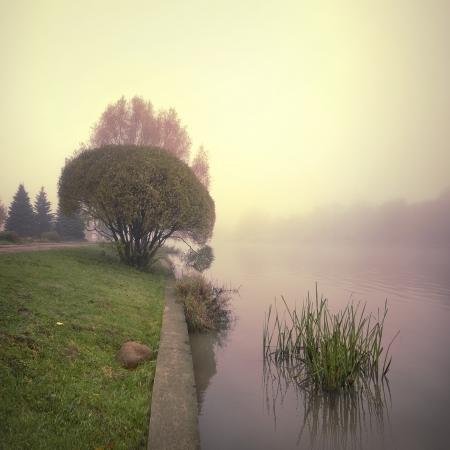 geheimnisvollen Nebel, Nebel Welt in Schweigen