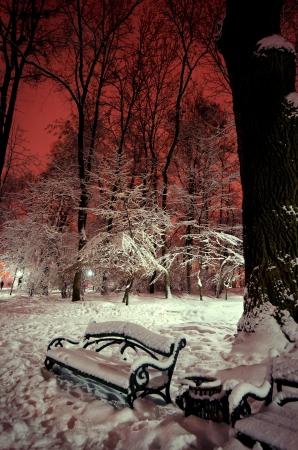 Shop im Schnee in einem Park in Winternacht Lizenzfreie Bilder