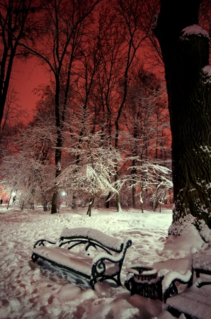 shop in the snow in a park in winter night