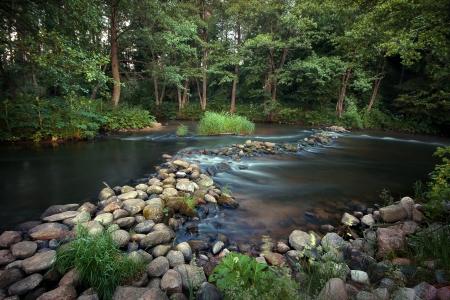 am Wasser und einem warmen Sommertag Lizenzfreie Bilder