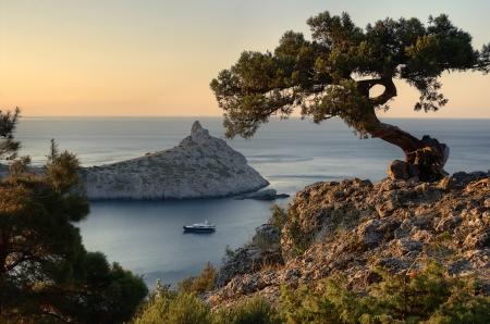 Cade auf dem Felsen im Hintergrund Meer und die Berge