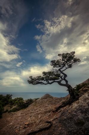 Landschaft Berg-Tal �ber dem Meer Lizenzfreie Bilder