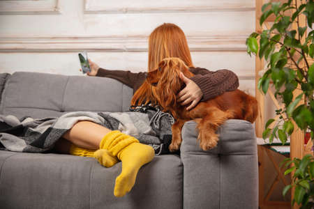 Little girl during video call by phone sitting on sofa with her dog.