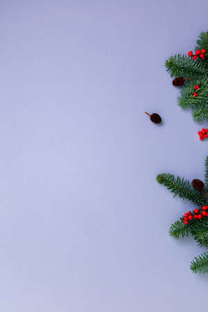 Christmas tree branches and festive decors over purple paper background