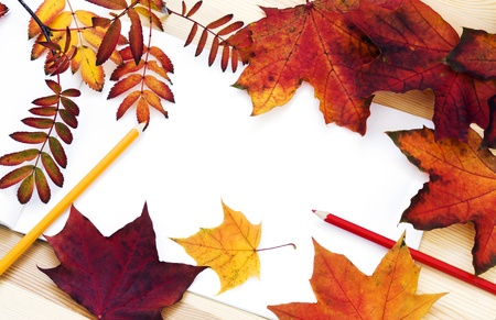Colorful leaves and colored pencils on white paper Stock Photo