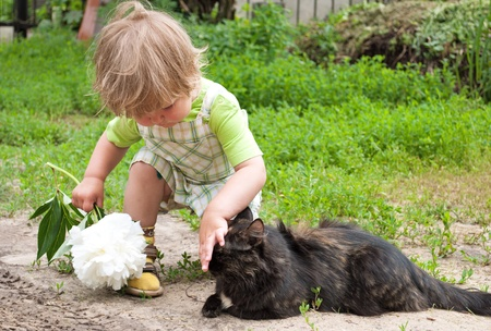 Cat and a child on beautiful summer day  photo