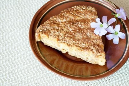 Slice of delicious fresh baked  cake  photo